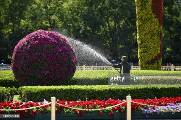 A worker waters the plants on July 12 2017 in Beijing China The dog days of summer start from July 12 in China