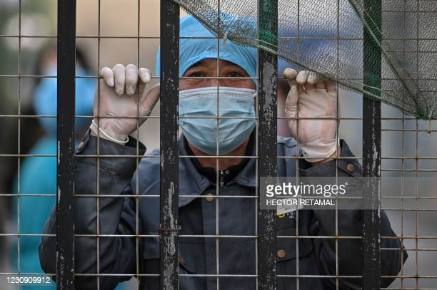 Worker wearing a face mask looks out from an entrance of a hospital toward the Wuhan centre for disease control and prevention, after members of the...