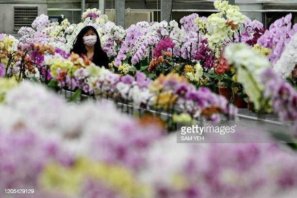 A worker wears a face mask as she walks by orchid flowers at the Char Ming Agriculture showroom in Tainan southern Taiwan on March 6 2020