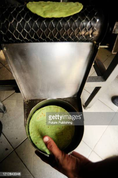 A worker wears protective mask while collect the Nopal tortillas of a tortillamaking machine The Tortilleria Fanny make tortillas of differents...