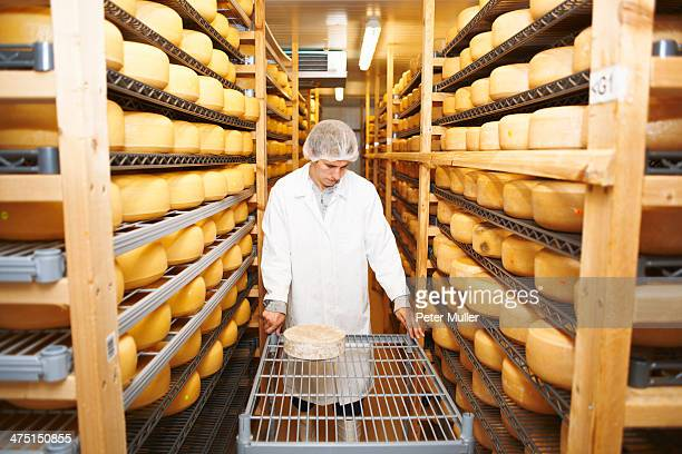 Worker wheeling cheese round for storage at farm factory