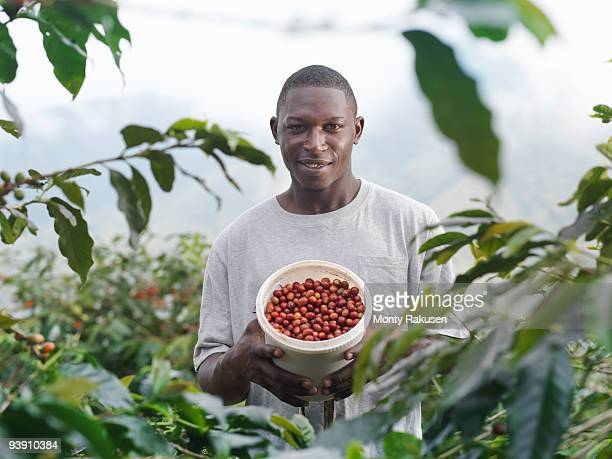 Worker With Coffee Beans In Tub