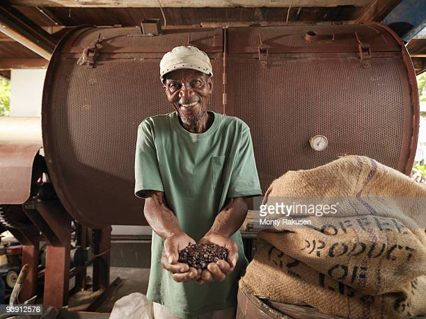 worker with coffee beans - factory farming stock pictures, royalty-free photos & images