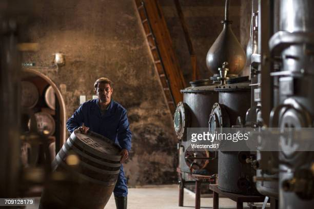 worker working in distillery - whisky stock photos and pictures