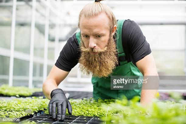 Worker working in garden center