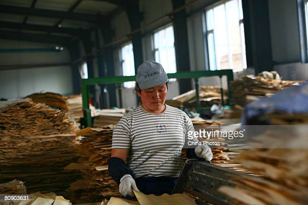A worker works to make plywood at a wood processing plant on April 28 2008 in Wangqing County of Yanbian Prefecture Jilin Province northeast China...