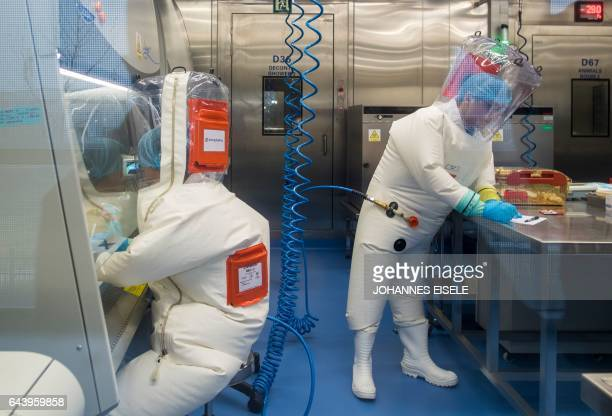 Workers are seen next to a cage with mice inside the P4 laboratory in Wuhan, capital of China's Hubei province, on February 23, 2017. - The P4...