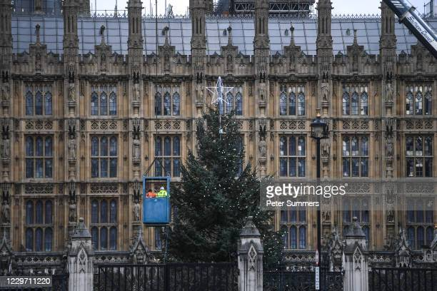 Workers are seen placing lights on a Christmas tree outside the Houses of Parliament on November 21, 2020 in London, England. The 43ft Sitka spruce...