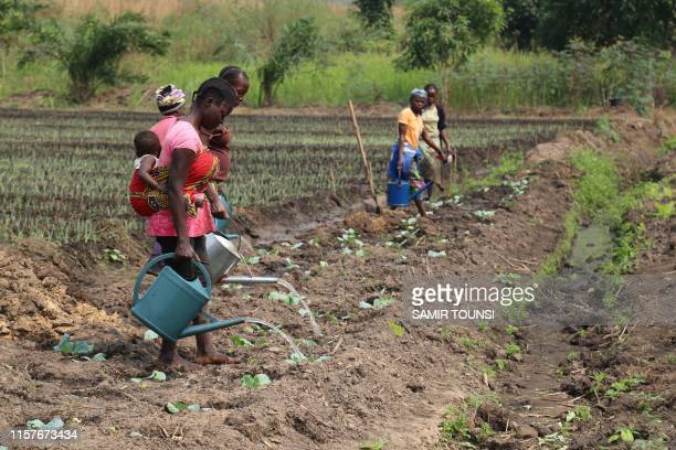 Workers are seen restoring fields and ponds at an agricultural and fishfarming cooperative in Mindouli in the wartorn region of Pool south of...