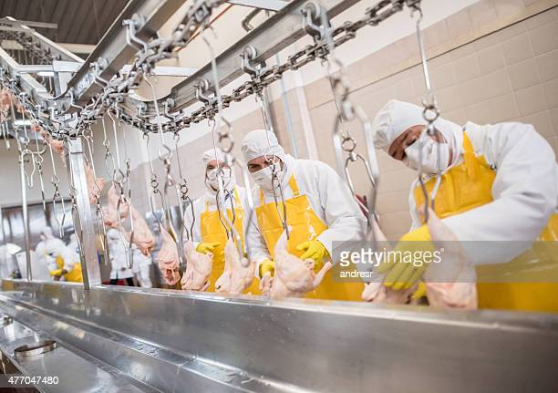 Workers at a food factory