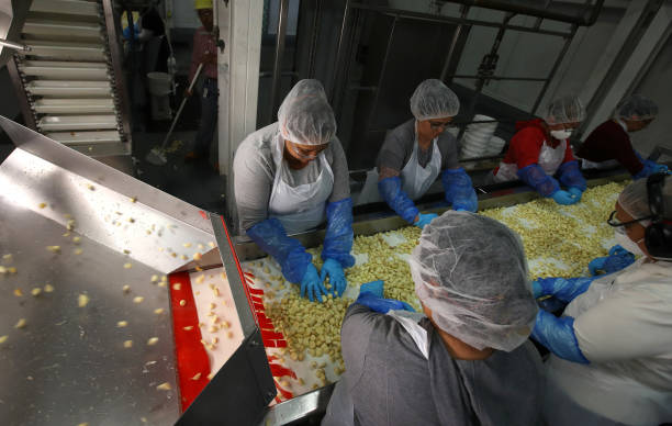 CA: Garlic Growers In U.S. Benefiting From Tariffs On Chinese Imports