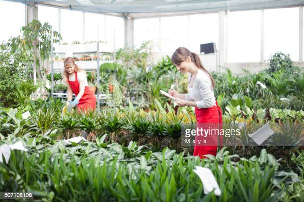 Workers at garden center retail store