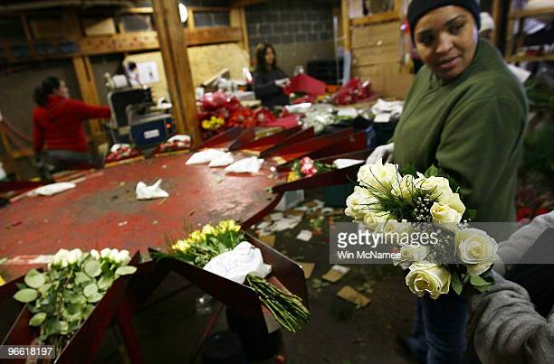 Workers at Potomac Floral Wholesale Inc prepare rose bouquets for Valentine's Day orders February 12 2010 in Silver Spring Maryland Today is expected...