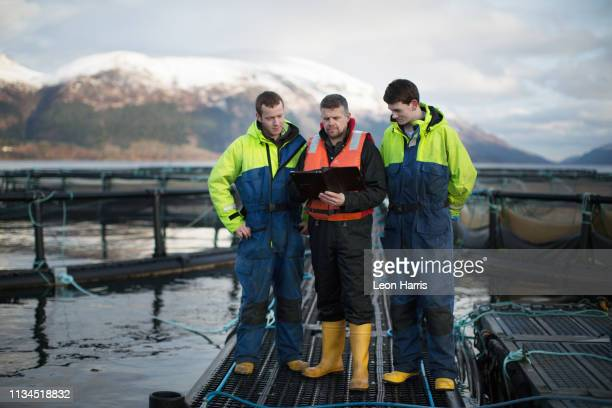 workers at salmon farm in rural lake - aquaculture stock pictures, royalty-free photos & images