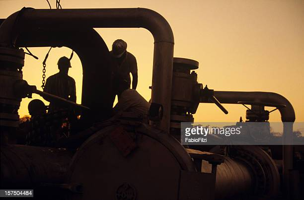 Workers at sunset