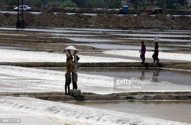 Workers at the Jamasp salt unit at Mulund along the Eastern Express highway