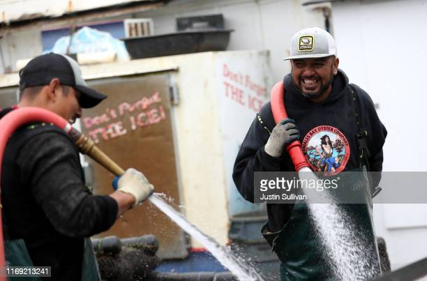Workers at Tomales Bay Oyster Co use hoses to clean off bags of freshly harvested oysters on August 20 2019 in Marshall California According to a...