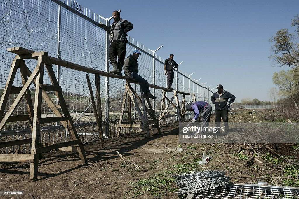Workers attach barbed wire to a border fence to prevent illegal ...