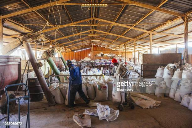 Workers bag up livestock feed into sacks ready for shipping on the Ehlerskroon farm outside Delmas in the Mpumalanga province South Africa on...