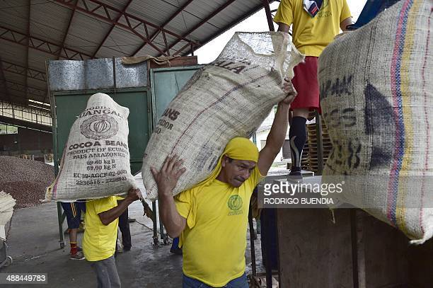 Workers carry cocoa bean bags for export at the Inmobiliaria Guangala exporting company in the outskirts of Guayaquil 260 km southwest of Quito on...
