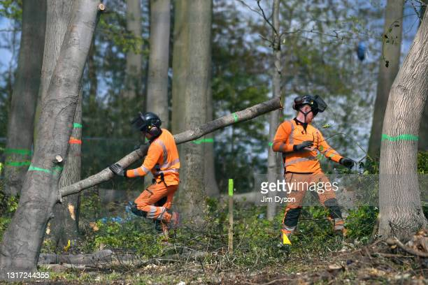 Workers carry out tree felling and clearance at Jones Hill Wood on May 07, 2021 in Great Missenden, England. After a prolonged legal battle 'Natural...