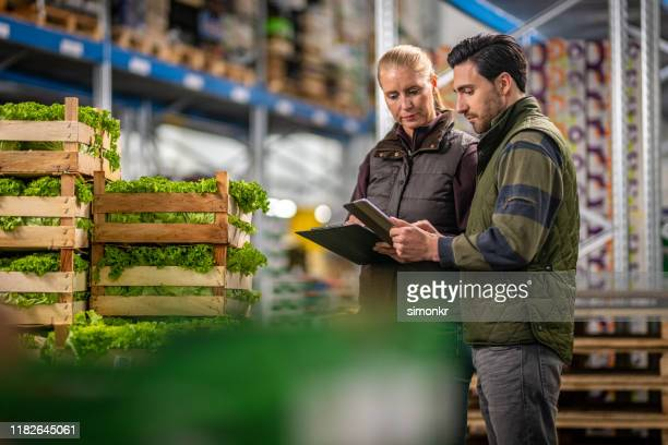 ouvriers vérifiant l'expédition de laitue dans l'entrepôt - aliments et boissons photos et images de collection