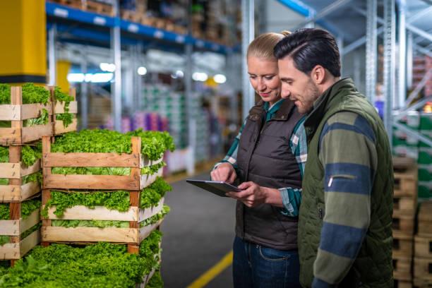 Pessoas trabalhando em um modelo de estocagem de uma estrutura de armazenagem agrícola
