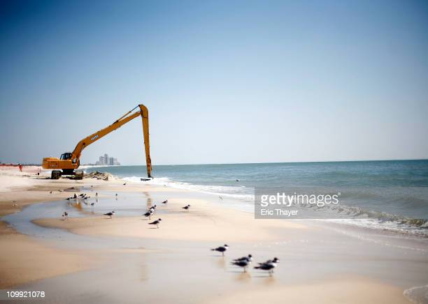 Workers clean oil leftover from the Deepwater Horizon oil spill in the Gulf of Mexico March 10 2011 at Perdido Key State Park in Pensacola Florida...
