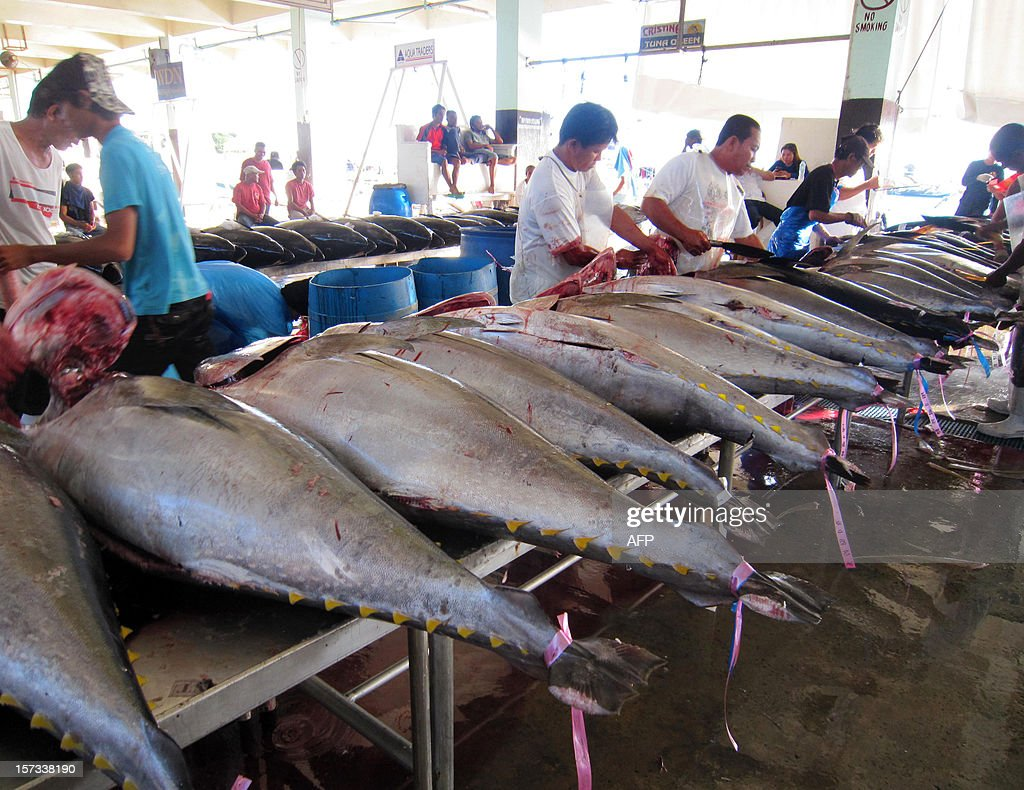 Workers clean tunas for export at the fish port in General Santos City, in the southern Philippine island of Mindanao on December 2, 2012, as Asia-Pacific fishing experts begin a five-day summit in the capital. Asia-Pacific fishing experts began a five-day summit in the Philippine capital Manila on December 2 to find ways at regulating what they says is overfishing of tuna. AFP PHOTO/Paul Bernaldez