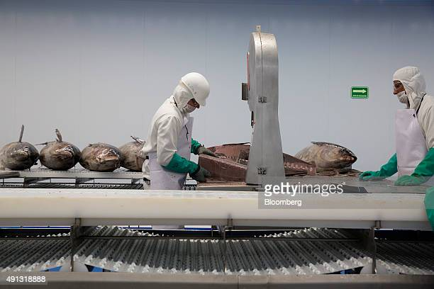 Workers cut a frozen tuna at the Grupo Pinsa SA processing plant in Mazatlan Mexico on Thursday Sept 29 2015 In April the World Trade Organization...