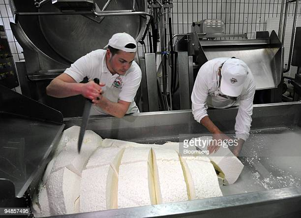 Workers cut curd before it is made into mozzarella di bufala or buffalo mozzarella at the Baronia factory near Caserta north of Naples Italy on...