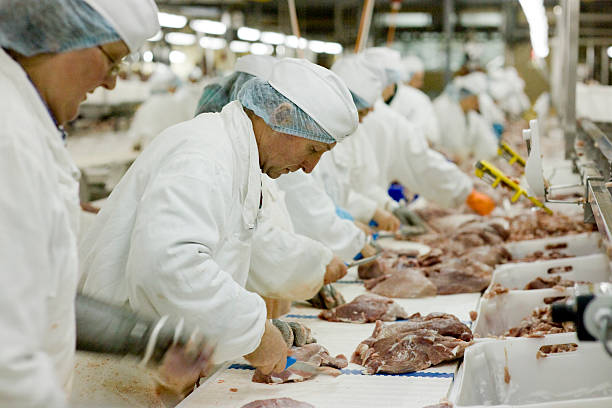 workers cutting meat at slaughterhouse assembly line picture id532507646?k=20&m=532507646&s=612x612&w=0&h=XVnfigh6 hKkJKdwSIDrDWR O0KVlUYFVUnXW03zDV4=