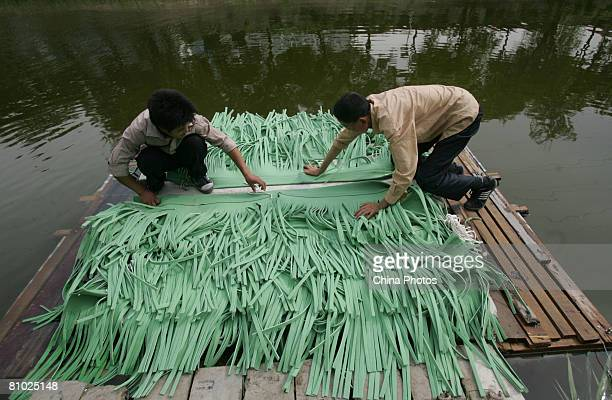 Workers drop artificial grass in the 2nd Ring Road moat to purify the water May 8 2008 in Beijing China China has pledged a clean environment for the...
