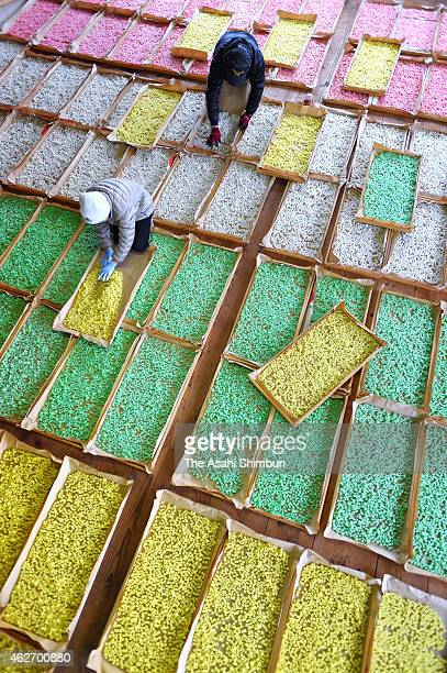 Workers dry colourful rice crackers which will be used for Girls' Day celebration on January 30 2015 in Shika Ishikawa Japan