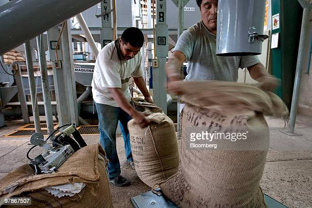 Workers fill bags with recently harvested coffee beans at a coffee processing facility in Fortin Veracruz Mexico on Friday March 5 2010 Mexican...