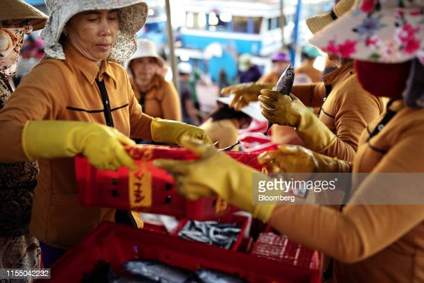 Workers handle crates of fish in Tan Quang harbor in Quang Nam province Vietnam on Wednesday June 26 2019 Fishermen are on the front lines of Asias...