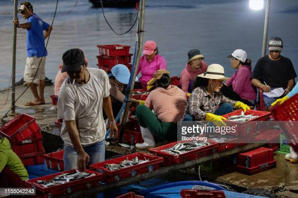Workers handle crates of fish on a boat docked at Tan Quang harbor in Quang Nam province Vietnam on Wednesday June 26 2019 Fishermen are on the front...