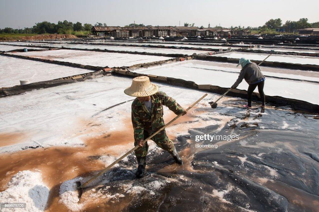 Salt Production at the Khok Saath Iodized Salt Factory Factory : News Photo