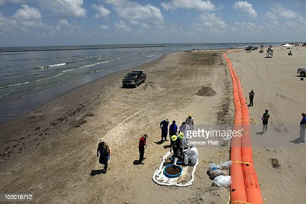 Workers hired by BP clean oil off the beach in a contaminated area on June 12 2010 in Grand Isle Louisiana US government scientists today estimated...
