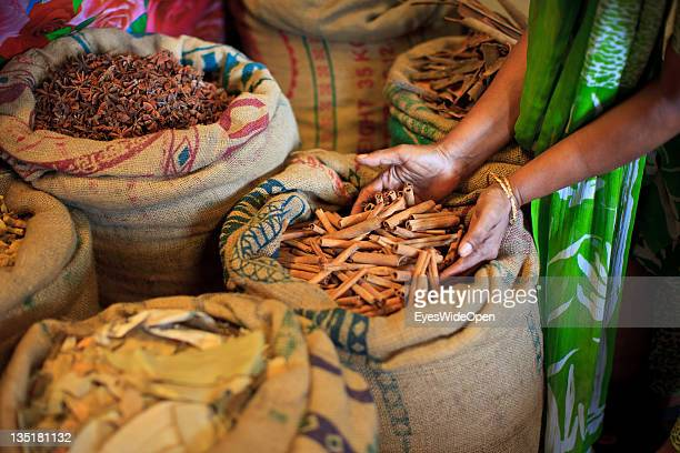 Workers in a ginger and spice factory with star aniseed pepper cinnamon in the Fort Cochin area on November 23 2011 in Cochin Kerala India