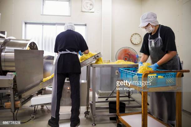 Workers in aprons and hats collecting freshly cut noodles from the conveyor belt to package and sell.