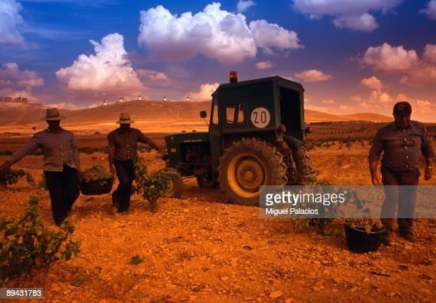 Workers in the vintage Consuegra Toledo Castile La Mancha