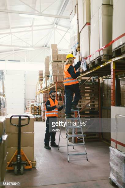 workers in warehouse checking merchandise - ladder stock pictures, royalty-free photos & images