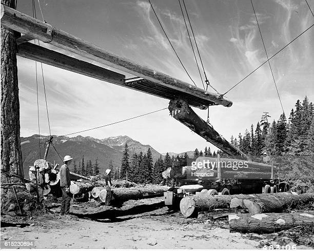 Workers load douglas fir logs onto a logging truck on a clearcut in the Wenatchee National Forest Washington 1957 | Location Line Creek Sale...