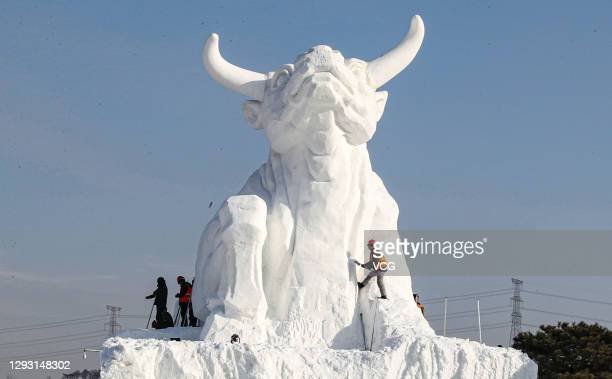 Workers make a 15-meter-tall bull snow sculpture at Qipan Mountain Scenic Spot on December 26, 2020 in Shenyang, Liaoning Province of China.