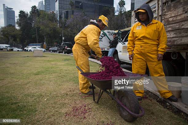 Workers make a silhouette of Pope Francis with colored wood chips at Angel de la Independencia monument on February 10, 2016 in Mexico City, Mexico....