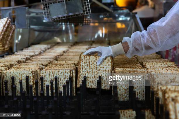Workers making matzah for Passover at Matzot Aviv factory with masks and gloves on April 07 2020 in Bnei Brak Israel There are about 10000 reported...