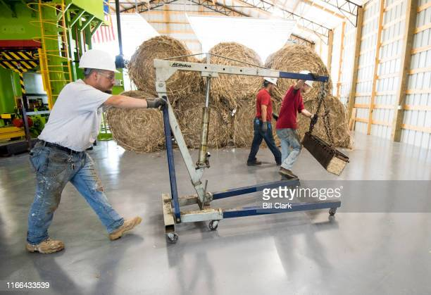 Workers move a freshly pressed hemp log to an oven at HempWood in Murray Ky on Thursday Sept 5 2019