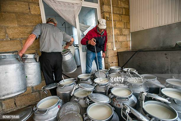 Workers of dairy factory collect milk samples at the Nikitin Kolkhoz at Ivanovka village Azerbaijan Ivanovka is a village with mainly Russian...