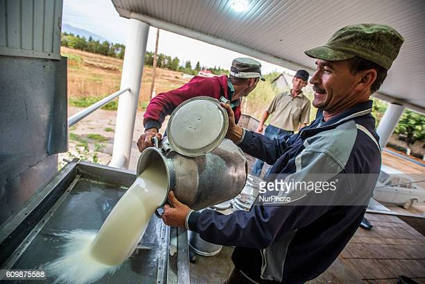 Workers of dairy factory pour fresh milk to a special container with a filter net at the Nikitin Kolkhoz in Ivanovka village Azerbaijan From the...